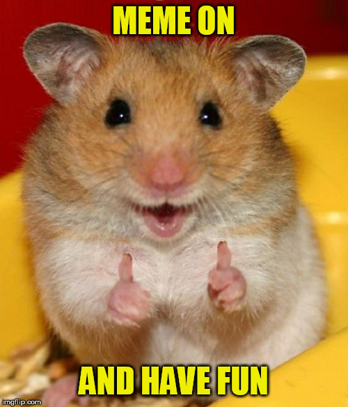 Hamster Thumbs Up | MEME ON AND HAVE FUN | image tagged in hamster thumbs up | made w/ Imgflip meme maker