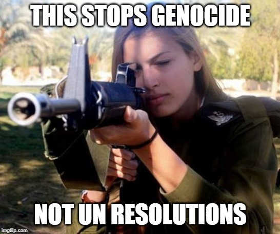 This Stops Genocides |  THIS STOPS GENOCIDE; NOT UN RESOLUTIONS | image tagged in this stops genocides | made w/ Imgflip meme maker