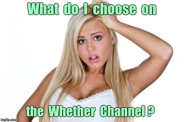 Choices, Choices! | What  do  I  choose  on the  Whether  Channel ? | image tagged in dumb blonde,memes,choose wisely,rick75230 | made w/ Imgflip meme maker
