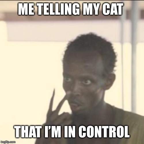 Look At Me | ME TELLING MY CAT THAT I'M IN CONTROL | image tagged in memes,look at me,funny cat memes,cats,funny,dank meme | made w/ Imgflip meme maker