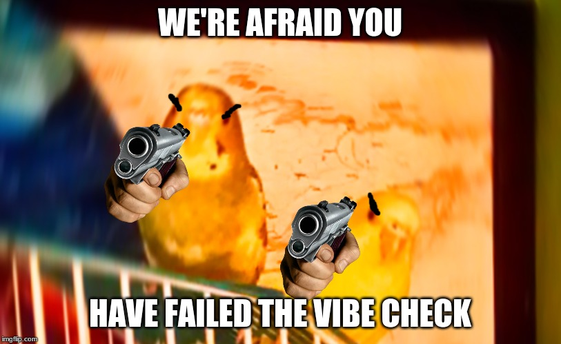 Vibe check birbs | WE'RE AFRAID YOU HAVE FAILED THE VIBE CHECK | image tagged in meme,bird,vibe check | made w/ Imgflip meme maker