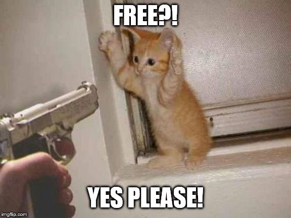 cat robbery | FREE?! YES PLEASE! | image tagged in cat robbery | made w/ Imgflip meme maker