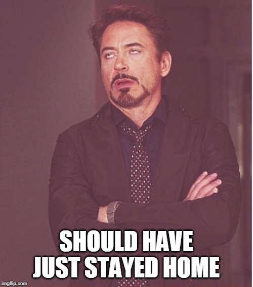 Face You Make Robert Downey Jr Meme | SHOULD HAVE JUST STAYED HOME | image tagged in memes,face you make robert downey jr | made w/ Imgflip meme maker