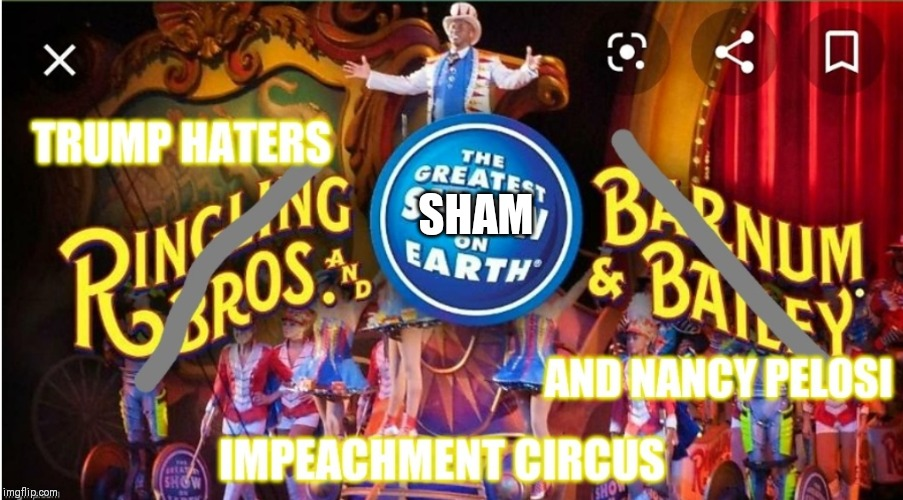 Oh look honey! Circus is in town! | SHAM | image tagged in donald trump,trump,nancy pelosi,impeachment,impeach trump,circus | made w/ Imgflip meme maker
