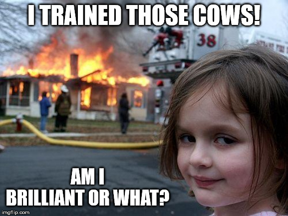 Disaster Girl Meme | I TRAINED THOSE COWS! AM I BRILLIANT OR WHAT? | image tagged in memes,disaster girl | made w/ Imgflip meme maker