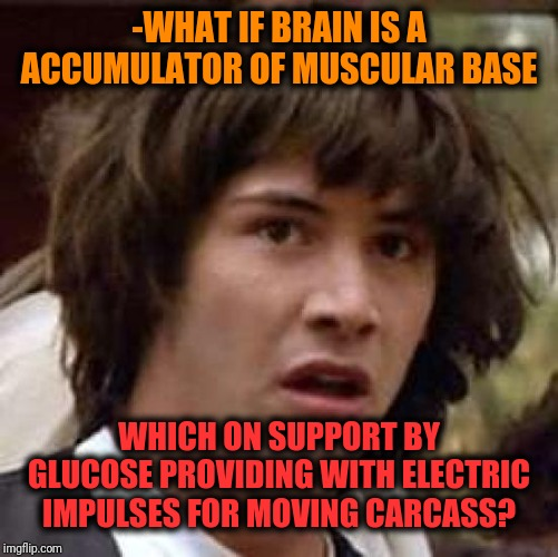 -Biological annotations. |  -WHAT IF BRAIN IS A ACCUMULATOR OF MUSCULAR BASE; WHICH ON SUPPORT BY GLUCOSE PROVIDING WITH ELECTRIC IMPULSES FOR MOVING CARCASS? | image tagged in memes,conspiracy keanu,brain,electric,moving on,what if | made w/ Imgflip meme maker
