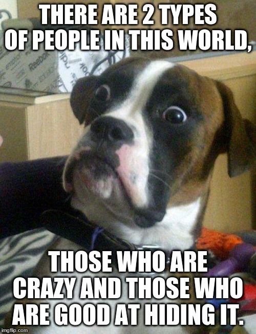 Blankie the Shocked Dog | THERE ARE 2 TYPES OF PEOPLE IN THIS WORLD, THOSE WHO ARE CRAZY AND THOSE WHO ARE GOOD AT HIDING IT. | image tagged in blankie the shocked dog | made w/ Imgflip meme maker