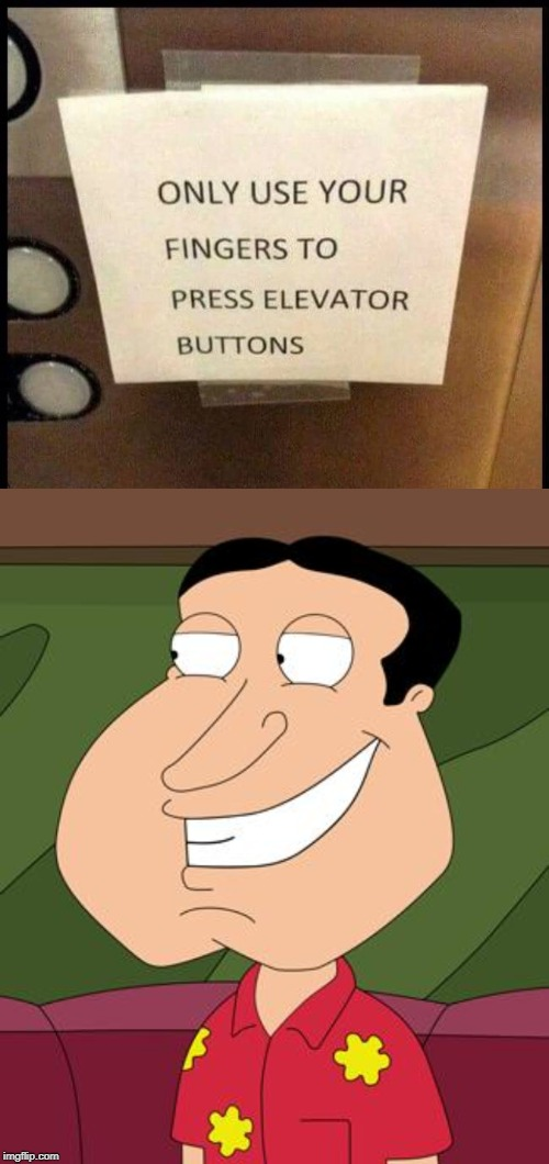giggidy | image tagged in quagmire giggity | made w/ Imgflip meme maker