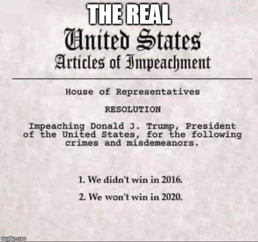 TRUE ARTICLES |  THE REAL | image tagged in impeachment,trump impeachment,nancy pelosi,trump 2020,trump 2016 | made w/ Imgflip meme maker