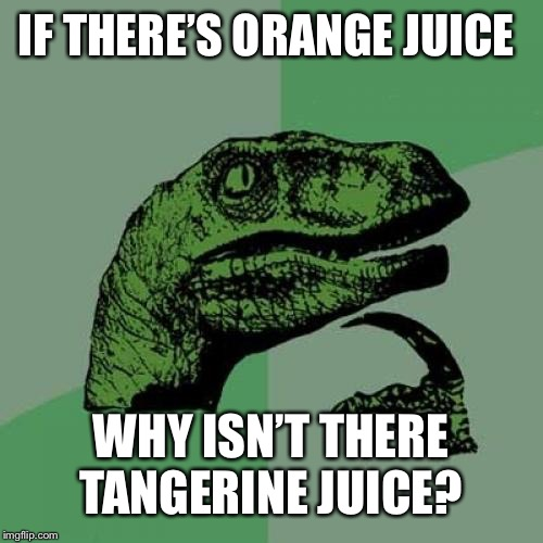 Philosoraptor |  IF THERE'S ORANGE JUICE; WHY ISN'T THERE TANGERINE JUICE? | image tagged in memes,philosoraptor | made w/ Imgflip meme maker