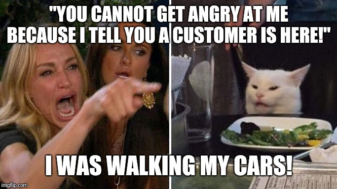 "Angry lady cat | ""YOU CANNOT GET ANGRY AT ME BECAUSE I TELL YOU A CUSTOMER IS HERE!"" I WAS WALKING MY CARS! 