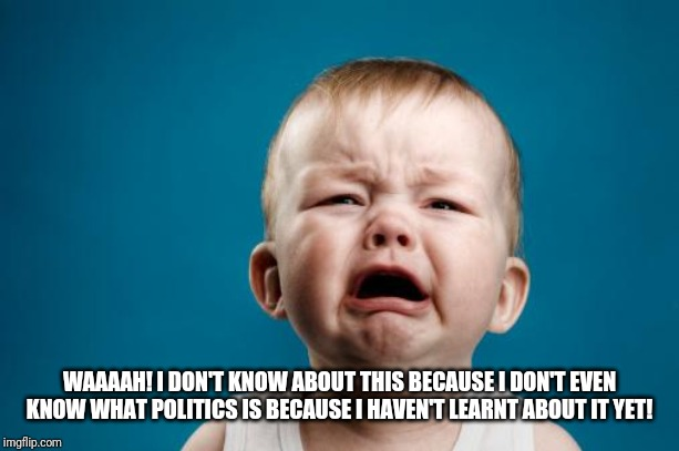 WAAAAH! I DON'T KNOW ABOUT THIS BECAUSE I DON'T EVEN KNOW WHAT POLITICS IS BECAUSE I HAVEN'T LEARNT ABOUT IT YET! | image tagged in crybaby | made w/ Imgflip meme maker