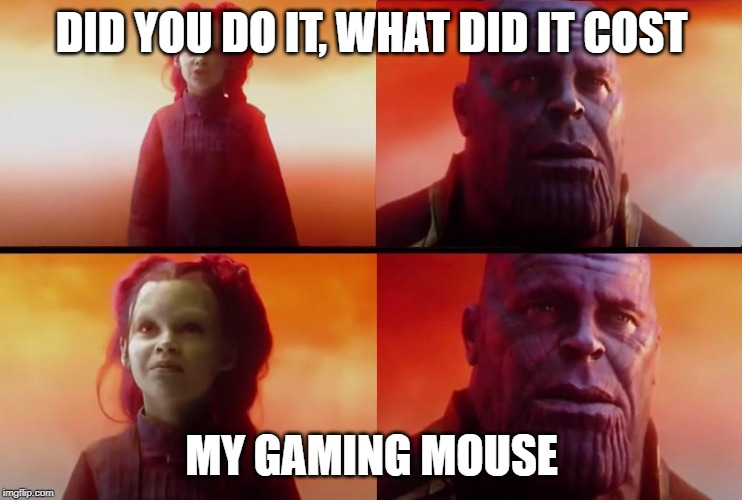 thanos what did it cost |  DID YOU DO IT, WHAT DID IT COST; MY GAMING MOUSE | image tagged in thanos what did it cost | made w/ Imgflip meme maker