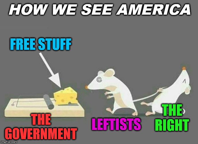 The differences of how we see America | HOW WE SEE AMERICA FREE STUFF LEFTISTS THE RIGHT THE GOVERNMENT | image tagged in left,right,america,government | made w/ Imgflip meme maker