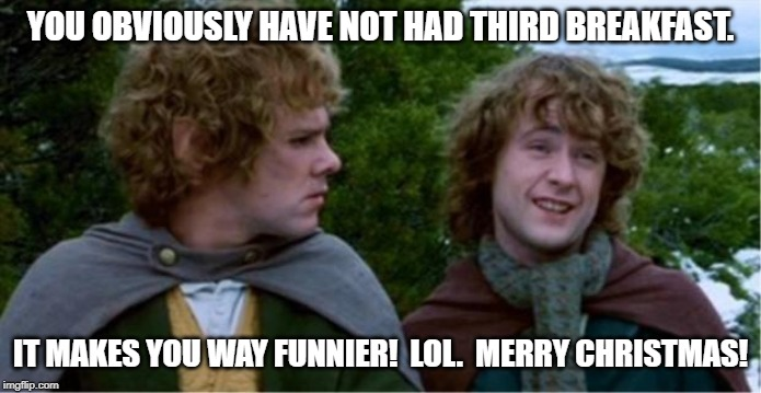 Merry and Pippin |  YOU OBVIOUSLY HAVE NOT HAD THIRD BREAKFAST. IT MAKES YOU WAY FUNNIER!  LOL.  MERRY CHRISTMAS! | image tagged in merry and pippin | made w/ Imgflip meme maker
