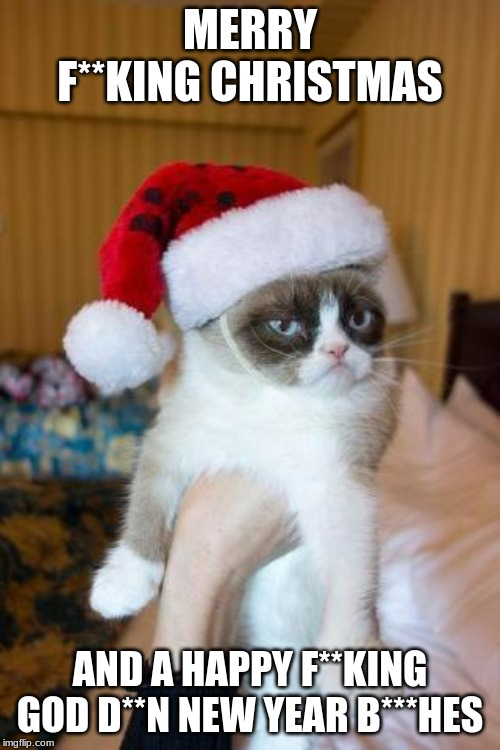 MERRY GRUMPY CAT CHRISTMAS HERE'S MY PRESENT | MERRY F**KING CHRISTMAS AND A HAPPY F**KING GOD D**N NEW YEAR B***HES | image tagged in memes,grumpy cat christmas,grumpy cat,funny memes,presents,i love you | made w/ Imgflip meme maker