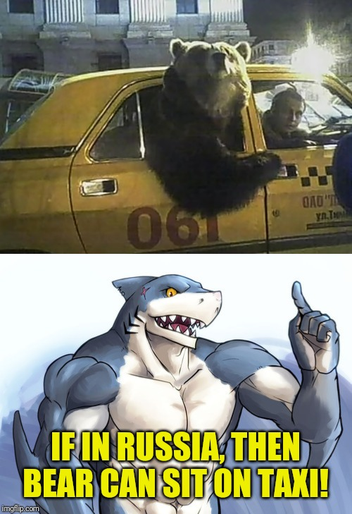 If bear in Russia, then he can sit on taxi! | IF IN RUSSIA, THEN BEAR CAN SIT ON TAXI! | image tagged in how to idea,funny,cursed image,bear,taxi,russia | made w/ Imgflip meme maker