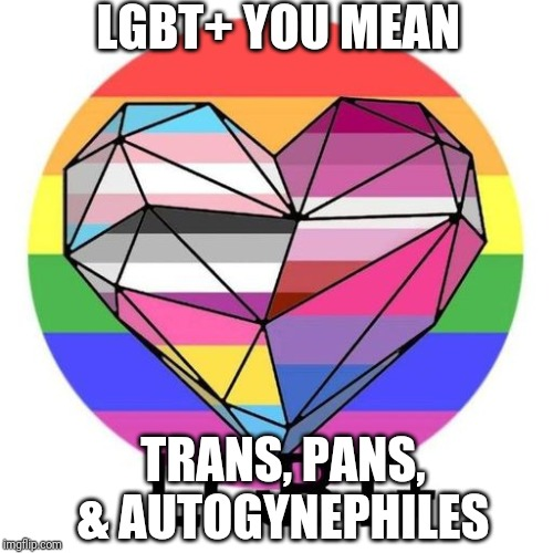 LGBT+ YOU MEAN TRANS, PANS, & AUTOGYNEPHILES | image tagged in lgbtq,transgender,lesbian,bisexual | made w/ Imgflip meme maker