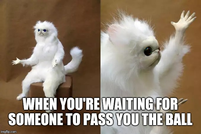 Persian Cat Room Guardian Meme |  WHEN YOU'RE WAITING FOR SOMEONE TO PASS YOU THE BALL | image tagged in memes,persian cat room guardian | made w/ Imgflip meme maker