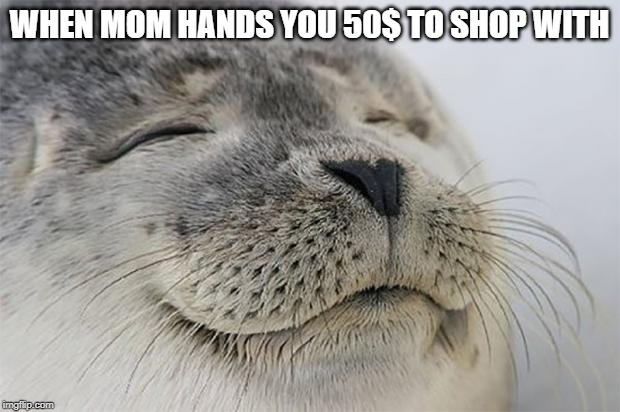 Satisfied Seal |  WHEN MOM HANDS YOU 50$ TO SHOP WITH | image tagged in memes,satisfied seal,funny memes | made w/ Imgflip meme maker