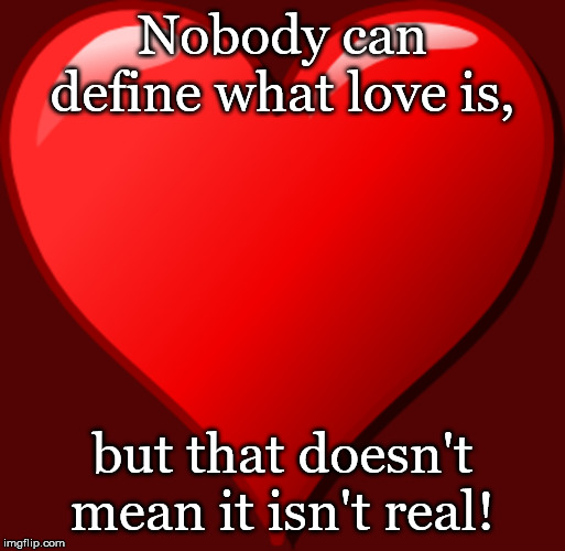 Fact! | Nobody can define what love is, but that doesn't mean it isn't real! | image tagged in love | made w/ Imgflip meme maker