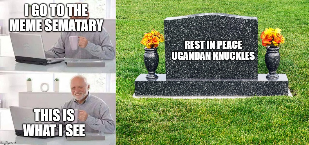 I GO TO THE MEME SEMATARY THIS IS WHAT I SEE REST IN PEACE UGANDAN KNUCKLES | image tagged in memes,hide the pain harold,ugandan knuckles | made w/ Imgflip meme maker