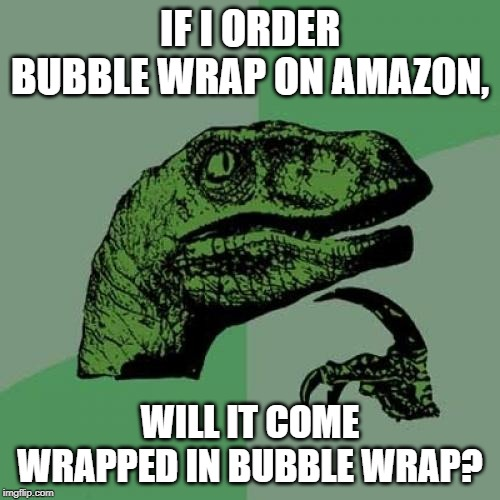 Philosaraptor | IF I ORDER BUBBLE WRAP ON AMAZON, WILL IT COME WRAPPED IN BUBBLE WRAP? | image tagged in philosaraptor | made w/ Imgflip meme maker