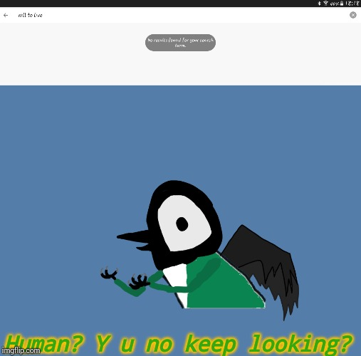 Human? Y u no keep looking? | image tagged in y u no pied wagtail | made w/ Imgflip meme maker