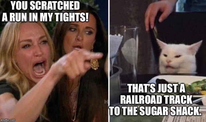 White Cat | YOU SCRATCHED A RUN IN MY TIGHTS! THAT'S JUST A RAILROAD TRACK TO THE SUGAR SHACK. | image tagged in white cat | made w/ Imgflip meme maker