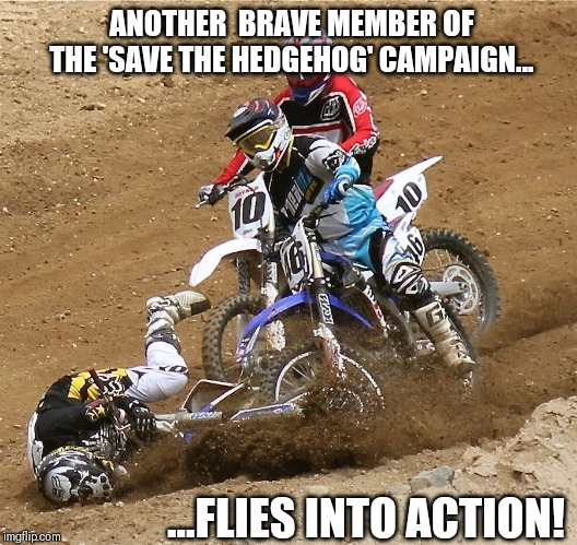 Save the hedgehog | ANOTHER  BRAVE MEMBER OF THE 'SAVE THE HEDGEHOG' CAMPAIGN... ...FLIES INTO ACTION! | image tagged in hedgehog,motocross,motorbike,crash,rescue,funny | made w/ Imgflip meme maker