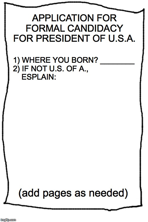 APPLICATION FOR FORMAL CANDIDACY FOR PRESIDENT OF U.S.A. 1) WHERE YOU BORN? ________ 2) IF NOT U.S. OF A.,     ESPLAIN: (add pages as needed | image tagged in blank white template | made w/ Imgflip meme maker