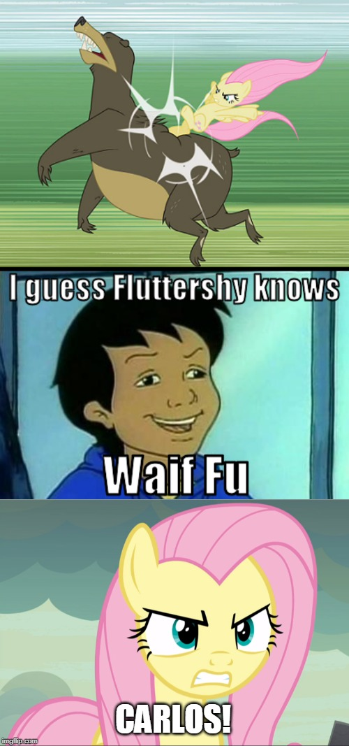 Carlos puns on Fluttershy |  CARLOS! | image tagged in carlos,fluttershy,my little pony friendship is magic,magic school bus | made w/ Imgflip meme maker