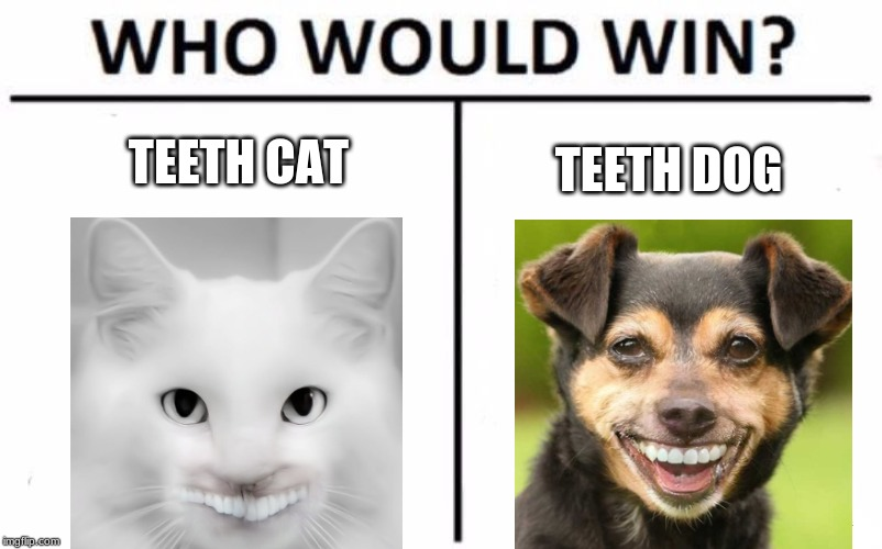 Who Would Win? | TEETH CAT TEETH DOG | image tagged in memes,who would win,teeth dog,teeth cat | made w/ Imgflip meme maker