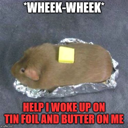 Baked Furry Potato |  *WHEEK-WHEEK*; HELP I WOKE UP ON TIN FOIL AND BUTTER ON ME | image tagged in baked furry potato,guinea pig,kavy_king,food,funny,potato | made w/ Imgflip meme maker