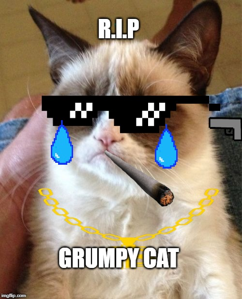 Grumpy Cat | R.I.P GRUMPY CAT | image tagged in memes,grumpy cat | made w/ Imgflip meme maker