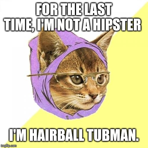 Hipster Kitty |  FOR THE LAST TIME, I'M NOT A HIPSTER; I'M HAIRBALL TUBMAN. | image tagged in memes,hipster kitty | made w/ Imgflip meme maker
