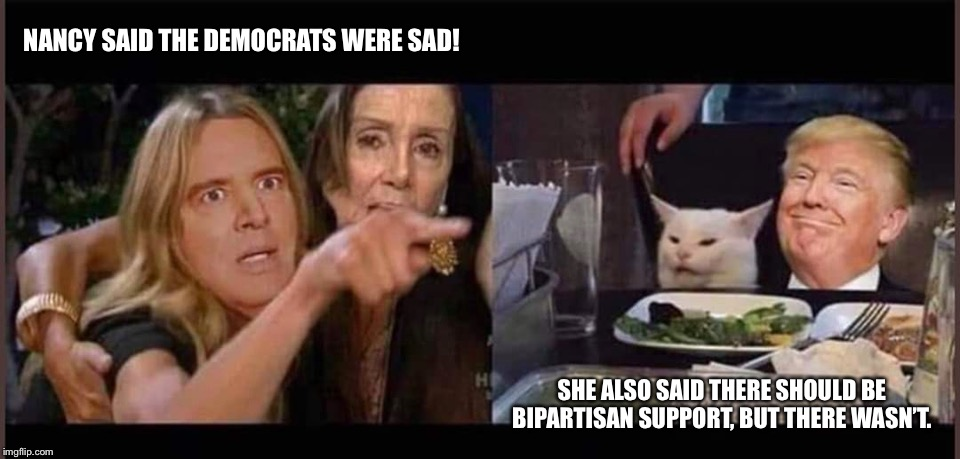 Schiff and Pelosi Being Far-left Progressive |  NANCY SAID THE DEMOCRATS WERE SAD! SHE ALSO SAID THERE SHOULD BE BIPARTISAN SUPPORT, BUT THERE WASN'T. | image tagged in schiff pelosi trump cat,schiff and pelosi yelling at smudge the cat and trump,memes | made w/ Imgflip meme maker
