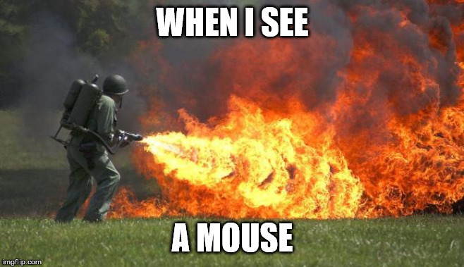 flamethrower |  WHEN I SEE; A MOUSE | image tagged in flamethrower,mouse | made w/ Imgflip meme maker