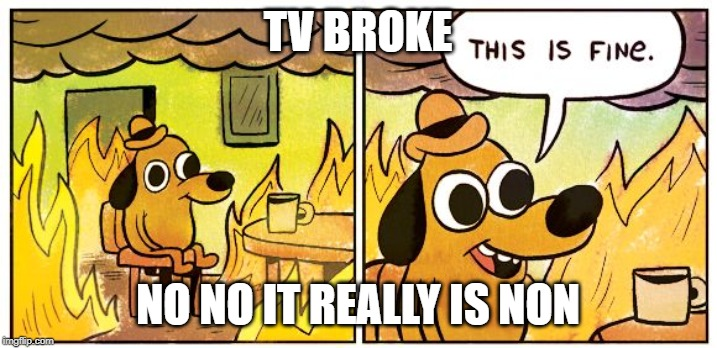 This Is Fine |  TV BROKE; NO NO IT REALLY IS NON | image tagged in this is fine dog | made w/ Imgflip meme maker