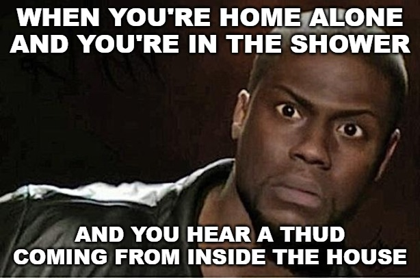 Kevin Hart |  WHEN YOU'RE HOME ALONE AND YOU'RE IN THE SHOWER; AND YOU HEAR A THUD COMING FROM INSIDE THE HOUSE | image tagged in memes,kevin hart | made w/ Imgflip meme maker