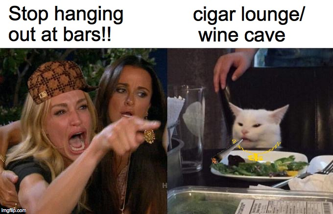 When Kitty Does Bad | Stop hanging out at bars!! cigar lounge/  wine cave | image tagged in memes,woman yelling at cat,angry lady cat,salad cat,cigar babe,wine drinker | made w/ Imgflip meme maker