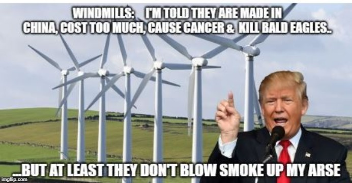 Trump and windmills | image tagged in trump,windmills | made w/ Imgflip meme maker