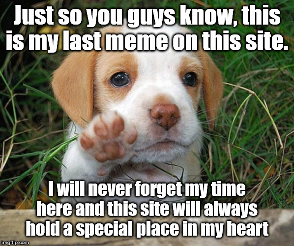 dog puppy bye | Just so you guys know, this is my last meme on this site. I will never forget my time here and this site will always hold a special place in | image tagged in dog puppy bye | made w/ Imgflip meme maker