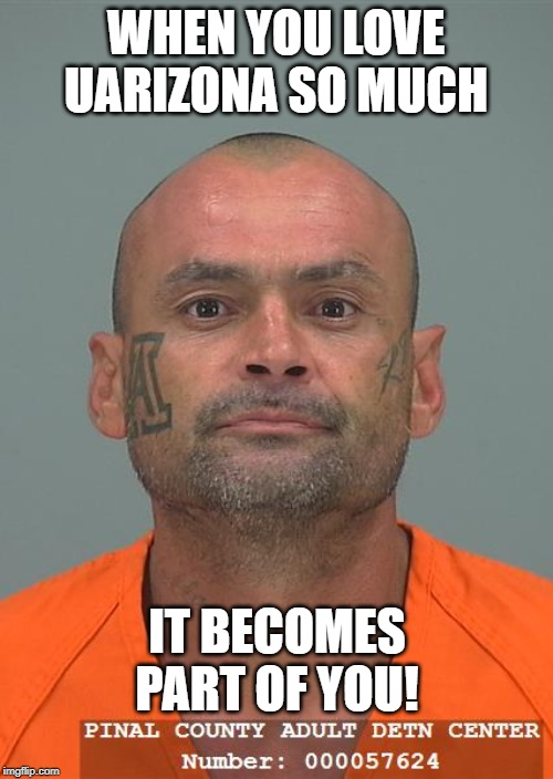 WHEN YOU LOVE UARIZONA SO MUCH IT BECOMES PART OF YOU! | image tagged in arizona,uarizona,pinal,mugshot | made w/ Imgflip meme maker