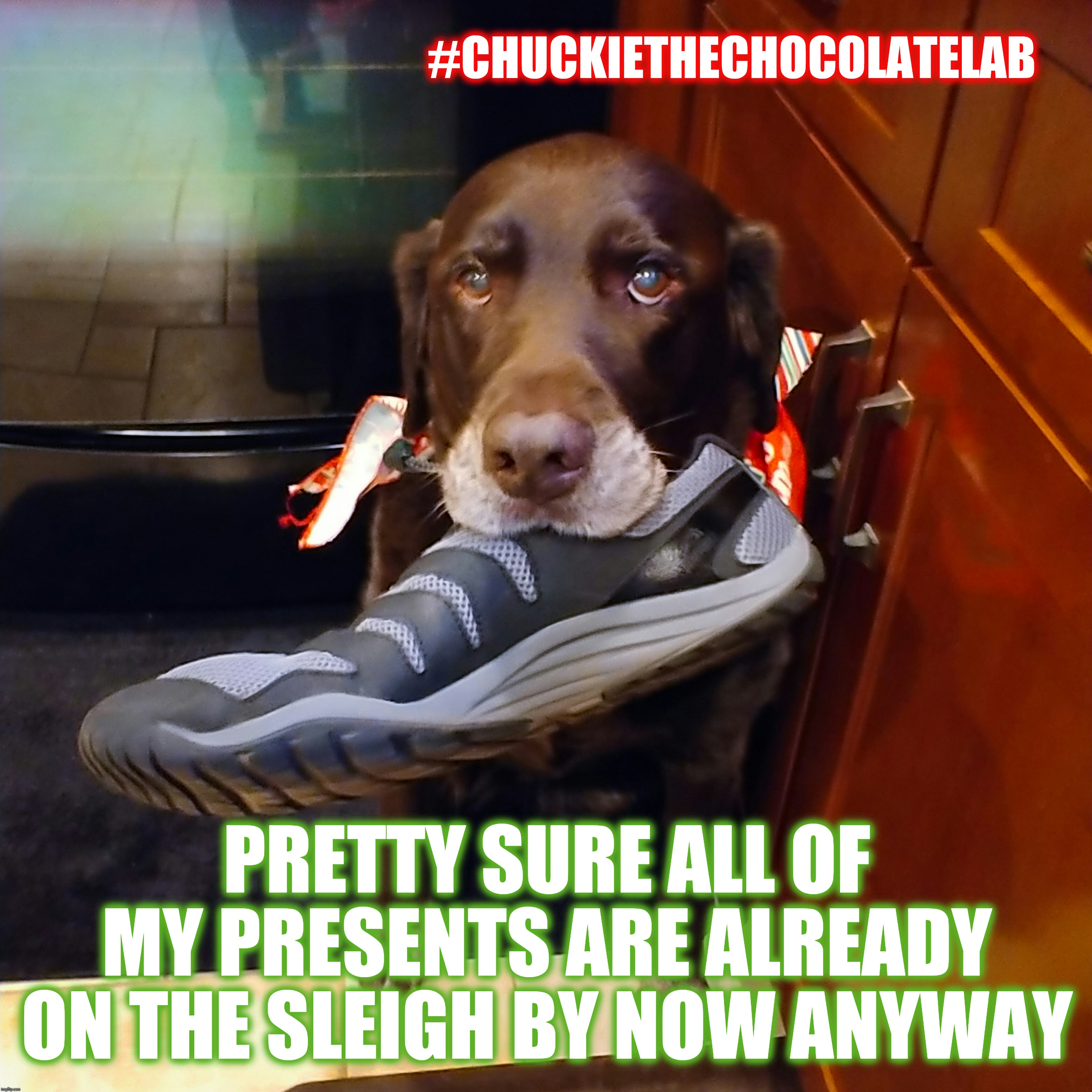 Naughty on Christmas eve | PRETTY SURE ALL OF MY PRESENTS ARE ALREADY ON THE SLEIGH BY NOW ANYWAY #CHUCKIETHECHOCOLATELAB | image tagged in chuckie the chocolate lab,santa naughty list,dogs,funny,memes,christmas eve | made w/ Imgflip meme maker