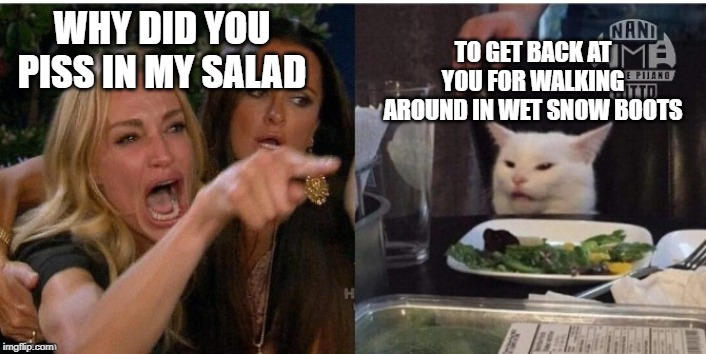 Fluffy's revenge |  TO GET BACK AT YOU FOR WALKING AROUND IN WET SNOW BOOTS; WHY DID YOU PISS IN MY SALAD | image tagged in white cat table | made w/ Imgflip meme maker