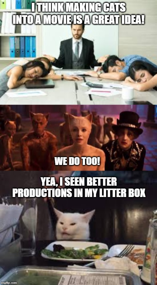 I THINK MAKING CATS INTO A MOVIE IS A GREAT IDEA! WE DO TOO! YEA, I SEEN BETTER PRODUCTIONS IN MY LITTER BOX | image tagged in cats,smudge the cat,movies,bad movie,taylor swift,woman yelling at cat | made w/ Imgflip meme maker