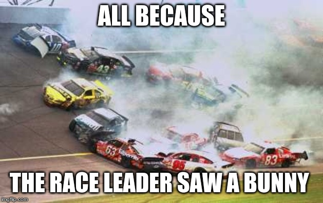 Because Race Car | ALL BECAUSE THE RACE LEADER SAW A BUNNY | image tagged in memes,because race car | made w/ Imgflip meme maker