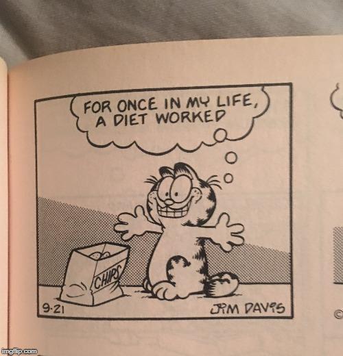 Cursed Image Starring Garfield Imgflip
