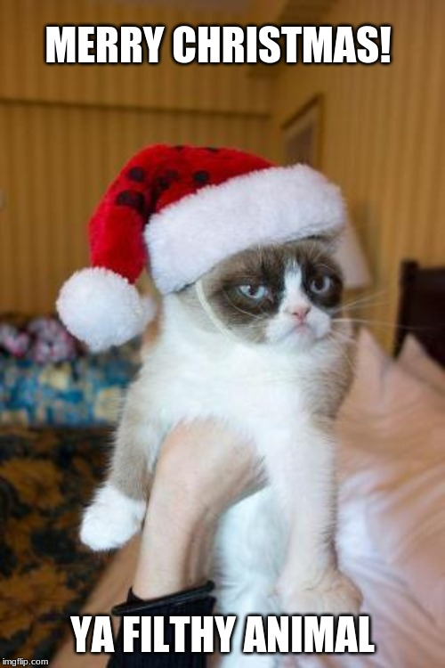 says the cat | MERRY CHRISTMAS! YA FILTHY ANIMAL | image tagged in memes,grumpy cat christmas,grumpy cat | made w/ Imgflip meme maker